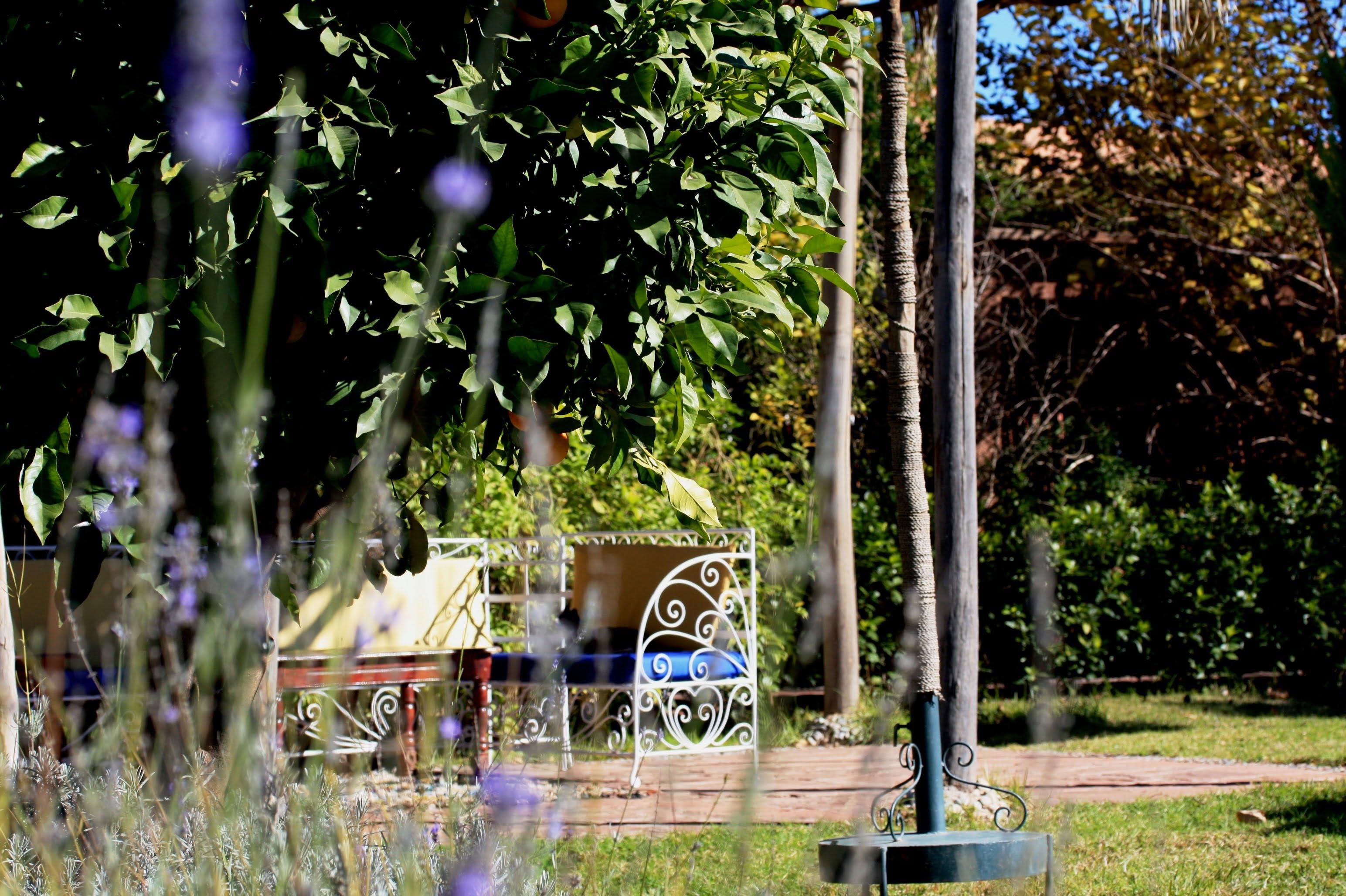 A L Origine Jardin Bioaromatique