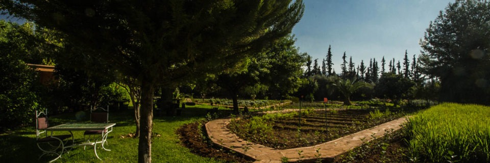 Découvrez la vallée de l'Ourika à travers ses plantes et traditions